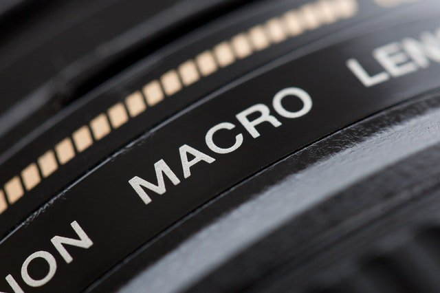 The Best Accessories for Macro Photography